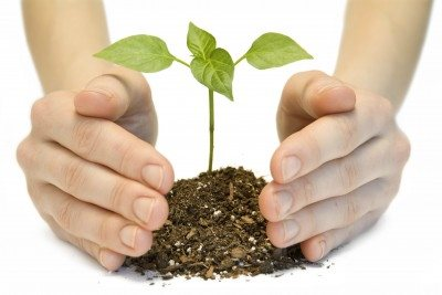 Become a Planting Church