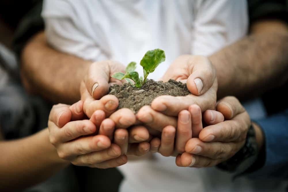Four Adjustments in Church Planting