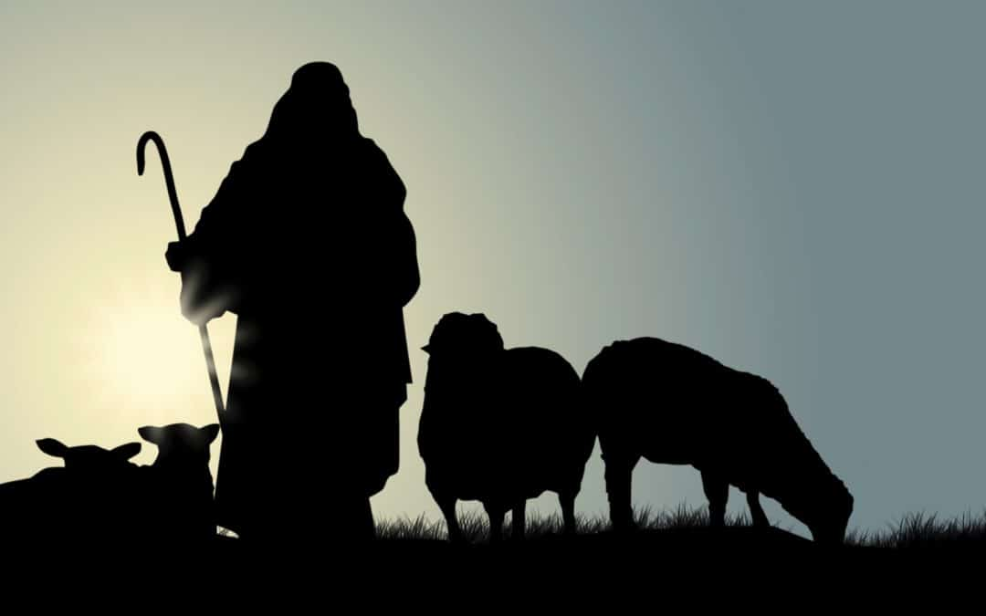 Shepherd the Flock of God That Is Among You